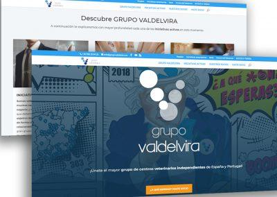 Grupo Valdevira