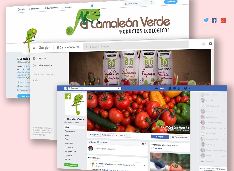 Estrategia en Redes Sociales para El Camaleón Verde