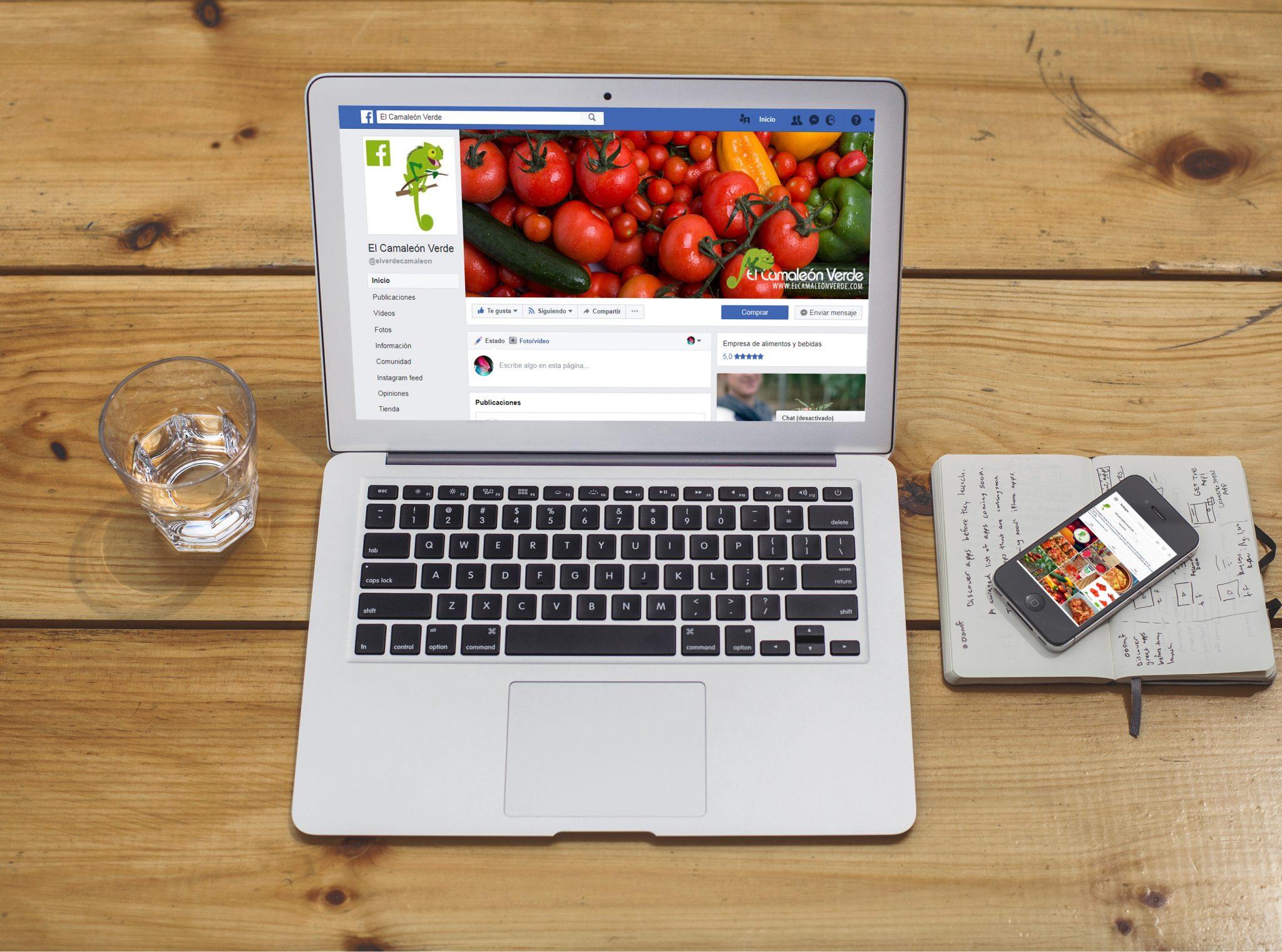 Estrategia Redes Sociales para El Camaleón Verde