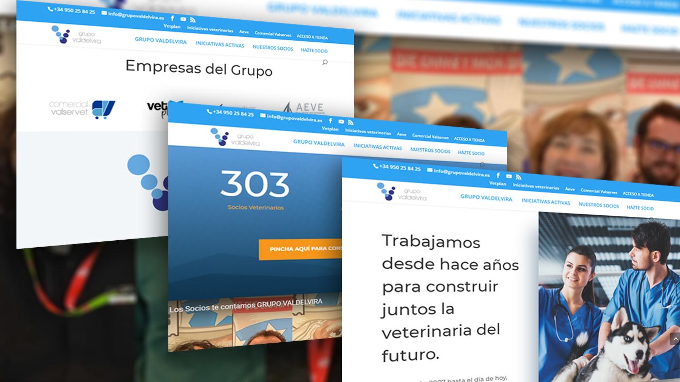 Creación de Web para Grupo Valdevira